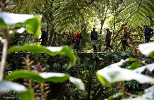 "Azores won the ""100 Most Sustainable Destination"" Best of Nature Category"