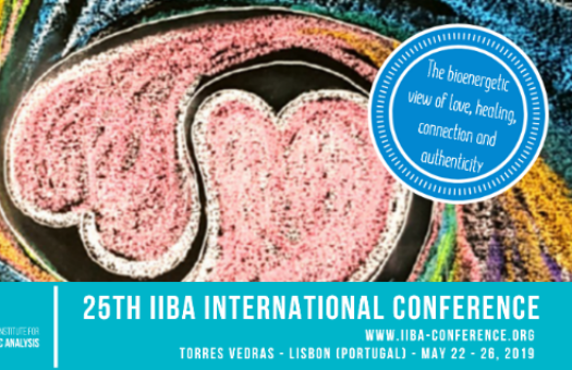25th IIBA Conference International Conferences Organized by Abreu Events