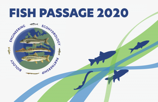 Fish Passage 2020 International Conference with Abreu Events Organization
